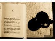 Imagen del menú: Capítulos de libros